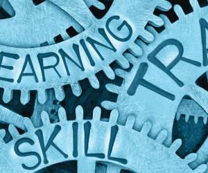 erp training, gears, learning, skills